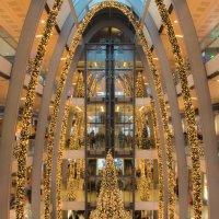 Рождественская ёлка :: Виталий Петухов