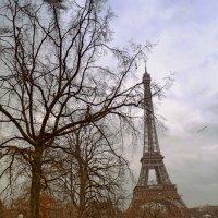 Paris :: Валентина Потулова