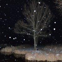 долгожданный снег :: Анастасия Татарина