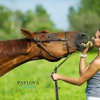 на ферме :: Светлана Павлова