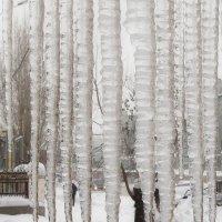 Зима уходящая :: Сергей Яценко