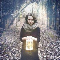 Во мрачном лесу :: Dmitry Vishneuski