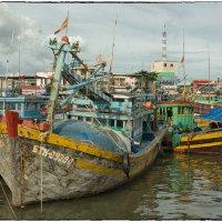В текущем году рыболовецкий флот Вьетнама добился больших успехов.. :: Александр Беляев