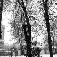 Зима пришла! :: Павел Хмельницкий