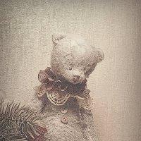 Teddy :: Daniel Woloschin