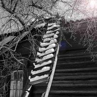 Лестница к солнцу :: Евгений Бубнов