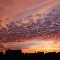 из моего окна :: Наталья Матвеева