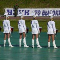 Мне бы в роту таких :: Андрей Стафеев