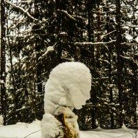 Замерзшая :: Дмитрий Марков
