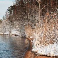 Берег теплой воды :: Анатолий Тимофеев