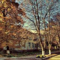 неврология-осень :: алекс дичанский
