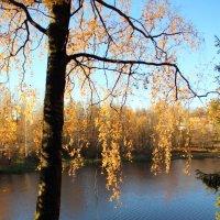 Уж небо осенью дышало... :: Наталья Ерёменко