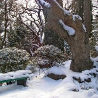 зима :: valeriy g_g