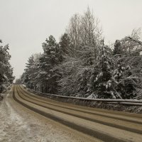 Зимняя дорога :: Irina ----