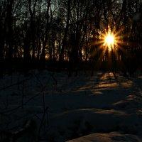 Зимний вечер :: Olenka