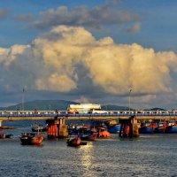 charming Asia :: Dmitry Ozersky