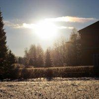 Winter :: Александра Борисик