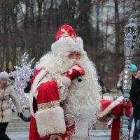 Веселый Новый Год :: Любовь Бутакова