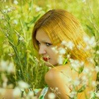 девушка в полевых цветах :: Света Сальник