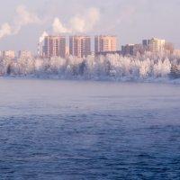 Зимняя Дубна :: Александр Семенов