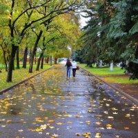 у природы нет плохой погоды :: Petr @+