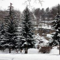 зима :: Игорь Kуленко