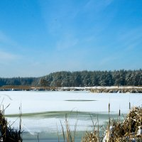 Зима :: Vitalik Babich
