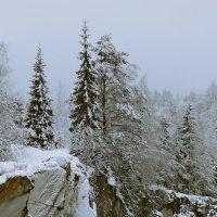 На севере диком... :: Владимир Федорчук