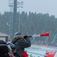 Биатлонная вубузелла... :: Сергей