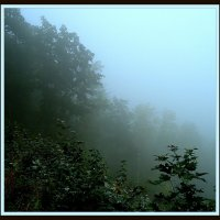 Туман в Уфе :: Владимир Хатмулин