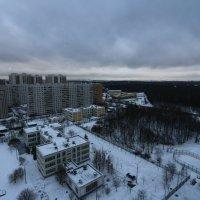 тест нового фотоаппарата :: Татьяна Сухова