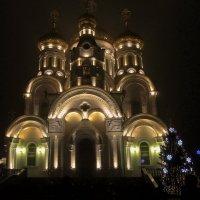 Богоявленский кафедральный собор :: Светлана Попова