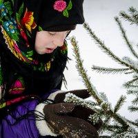 Маленькой ёлочке холодно зимой! :: Татьяна Титова