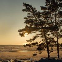 озеро Медвежье :: Виталий Верхозин