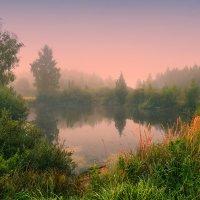 Сказки старого пруда :: Елена Потёмина