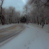 Зима пришла в Одессу :: Юрий Филоненко