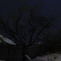 Ночь :: Zhan Bekenov