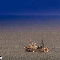 Просторы Черного моря :: Александр
