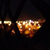 За вікном :: Соломія Палига
