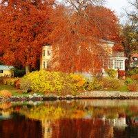 Анна Антанайтите - Влюбленность в Стокгольмскую осень