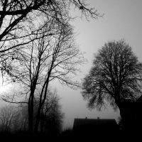 снимки забытой осени 1 :: Юрий Бондер