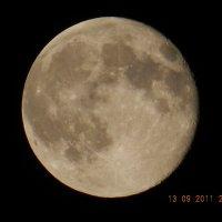 луна :: Анастасия Якушева