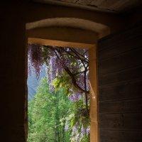Дверь в иные миры :: Sergej Lopatin