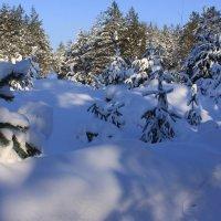 снега....снега..... :: Наталья