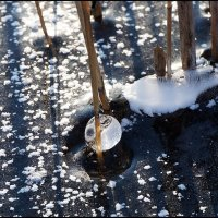 Проказы матушки-зимы :: Viktor Makarov
