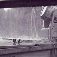 Дождь :: Сергей Поляков