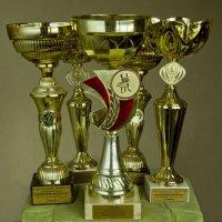 Натюрморт с кубками с дополнительной боковой подсветкой :: Александр Рябчиков
