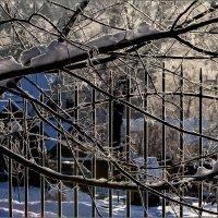 Зимний день :: Наталья Rosenwasser