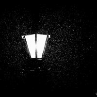 а снег все идет :: Vladislav Rogalev