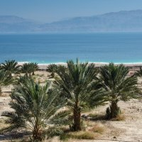 Побережье Мертвого моря :: Владимир Горубин